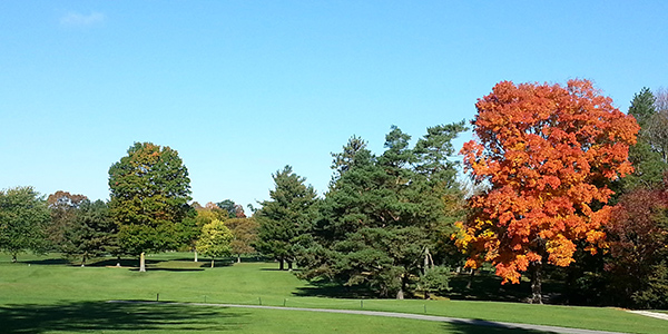 quit-qui-oc-golf-course-elkhart-lake-golf-the-seasons